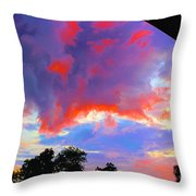 01142017113 Throw Pillow