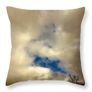01212017007 Throw Pillow