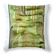 01328 Slide Throw Pillow