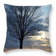 015 April Sunsets Throw Pillow