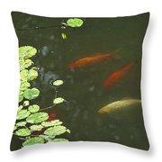 0158- Koi Throw Pillow