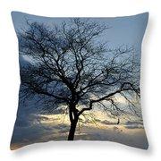 016 April Sunsets Throw Pillow