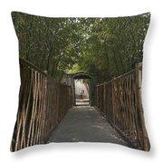 0171- Bamboo Walkway Throw Pillow