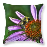 02 Bee And Echinacea Throw Pillow