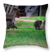 #02 Raccoon Race Throw Pillow