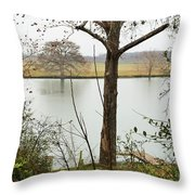 0216 Throw Pillow