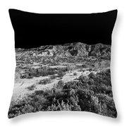 030715 Palo Duro Canyon 039 Throw Pillow