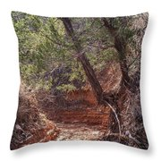 030715 Palo Duro Canyon 066 Throw Pillow