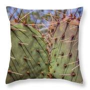 030715 Palo Duro Canyon 070 Throw Pillow