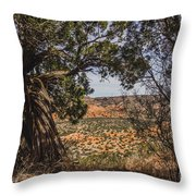 030715 Palo Duro Canyon 092 Throw Pillow