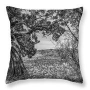 030715 Palo Duro Canyon 105 6 7 Throw Pillow