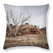 030715 Palo Duro Canyon 161 Throw Pillow