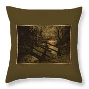 031207-21-s Throw Pillow