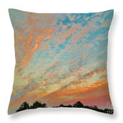 03262013023 Throw Pillow