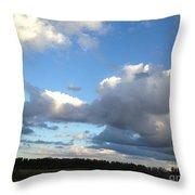 03262013024 Throw Pillow
