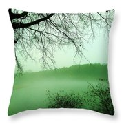 03262013032 Throw Pillow