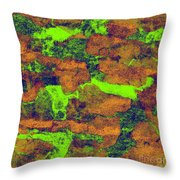 0374 Abstract Thought Throw Pillow