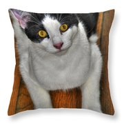04 Floyd Throw Pillow