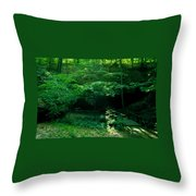 042407-45 Throw Pillow