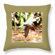 0518 - Northern Rough-winged Swallow Throw Pillow