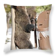060510-grizzly Back Scratch Throw Pillow