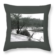 072606-24a Throw Pillow
