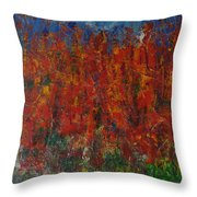 073 Abstract Thought Throw Pillow