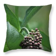 081117010 Throw Pillow