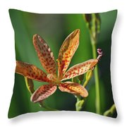 081117011 Throw Pillow