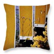 09032015036 Throw Pillow