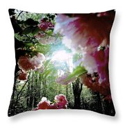09032015058 Throw Pillow