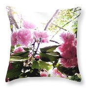 09032015060 Throw Pillow