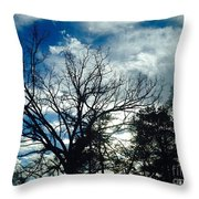 09032015068 Throw Pillow