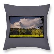 090717-56 Throw Pillow