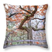 0981 Fall Colors At Starved Rock State Park Throw Pillow