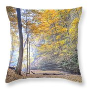 0983 Starved Rock Colors Throw Pillow