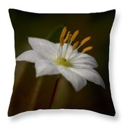 Arctic Starflower Throw Pillow