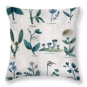 Lithography Of Common Flowers  Throw Pillow