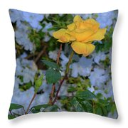 0139 Throw Pillow