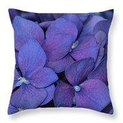0181 Throw Pillow