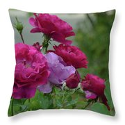 0195 Throw Pillow