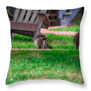 #01 Raccoon Race Throw Pillow