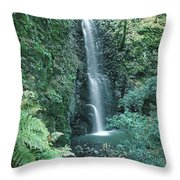 1b6351 Diamond A Waterfall Throw Pillow
