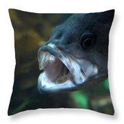 20-01-17 Throw Pillow