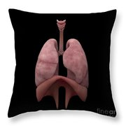 3d Rendering Of Human Lungs Throw Pillow