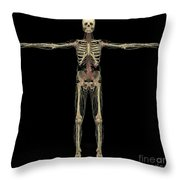 3d Rendering Of Human Lymphatic System Throw Pillow