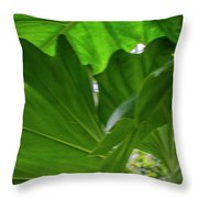 4327 - Leaves Throw Pillow
