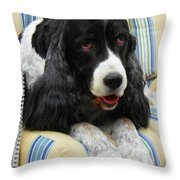#940 D1031 Farmer Browns Springer Spaniel Throw Pillow