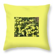 A Cluster Of Sunshine Throw Pillow