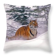 A Blur Of Tiger Throw Pillow